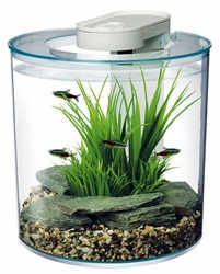 Marina 360° Aquarium Kits at Pet World, Rochester